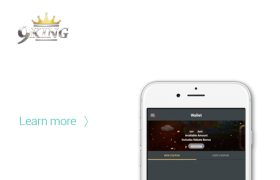 9KING Guideline How to Check Your 9KING Wallet?